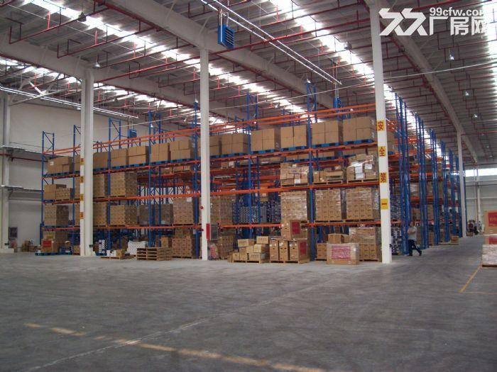 天津东丽湖104亩地块可定制出租标准仓库或冷库-图(1)