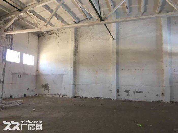 凤凰山路仓库100−1000m²低价出租可进大车管理规范-图(5)