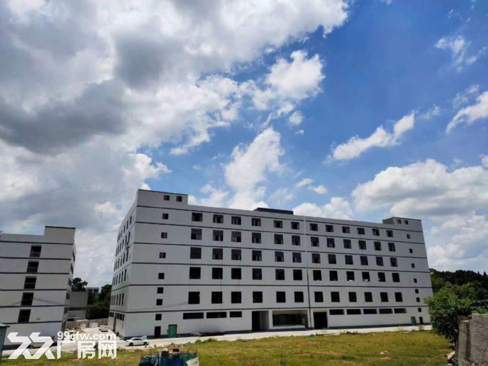 佛山西站周边约4万平方全新标准楼层厂房仓库出租-图(1)