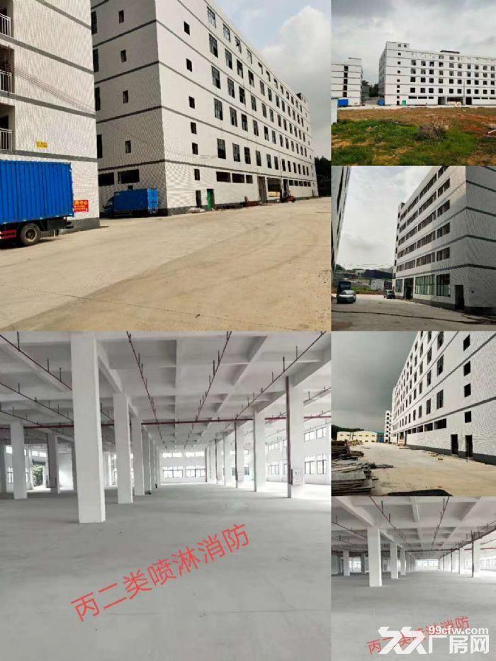 佛山西站周边约4万平方全新标准楼层厂房仓库出租-图(3)