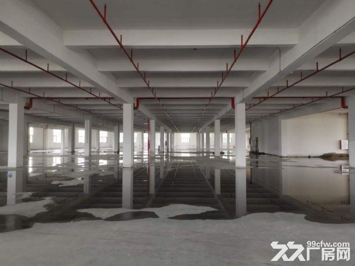 佛山西站周边约4万平方全新标准楼层厂房仓库出租-图(4)