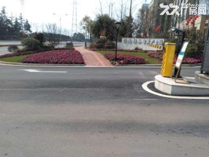 花园式厂房物业出租435平方米-图(3)