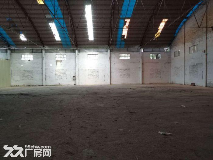 狮山小塘单一层物流园仓库厂房出租,剩面积约6000平方,大小面积可分租-图(2)