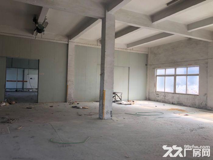 《房东直租》上海104板块1500㎡一楼厂房仓库出租可办环评-图(4)