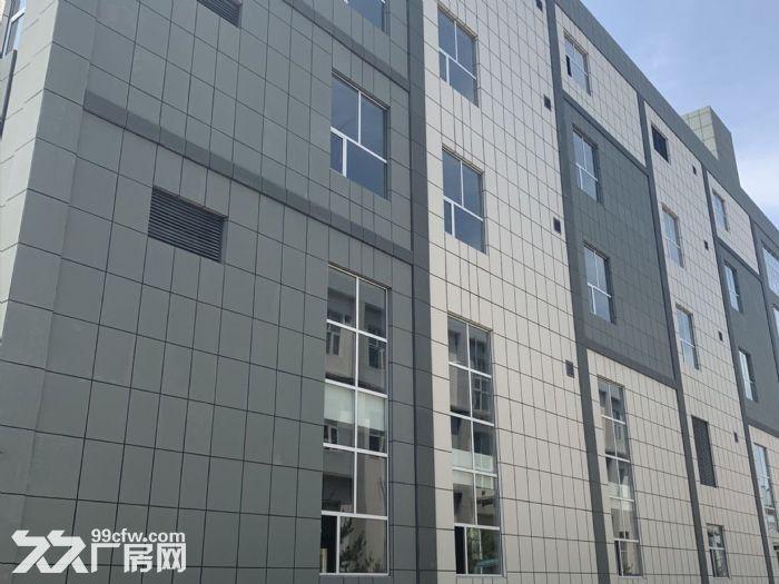 固安南区1500㎡−13000㎡厂房整租/分租-图(6)
