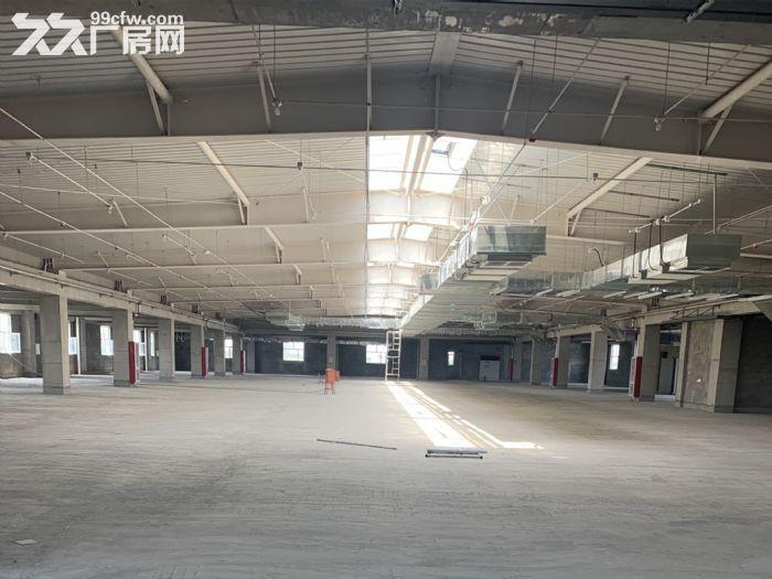 固安南区1500㎡−13000㎡厂房整租/分租-图(7)