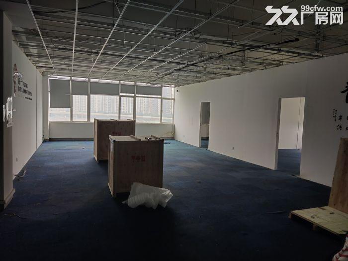 (狮山)新出赛格旁537平抄底价办公室仓库0公摊-图(3)