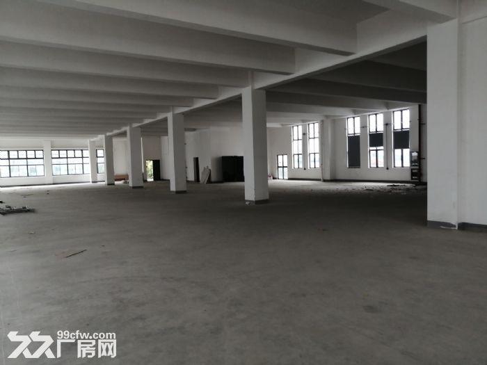 (高新区枫桥)新出478平小面积厂房研发办公室停车方便-图(3)