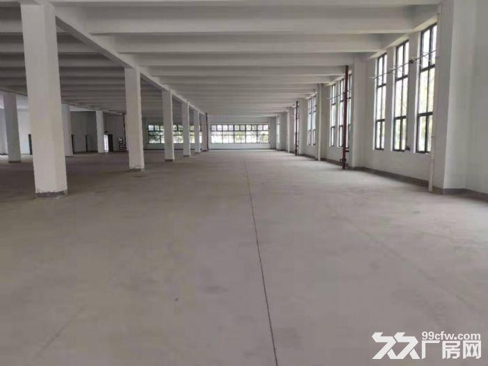 (高新区枫桥)新出478平小面积厂房研发办公室停车方便-图(5)