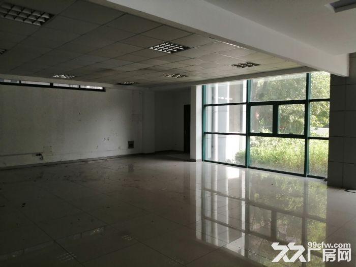 (高新区枫桥)新出450平精装厂房研发办公室停车方便-图(3)