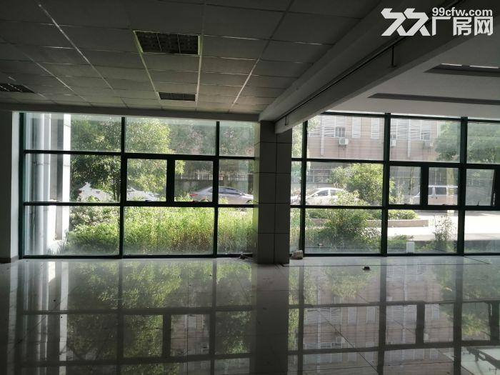 (高新区枫桥)新出450平精装厂房研发办公室停车方便-图(5)