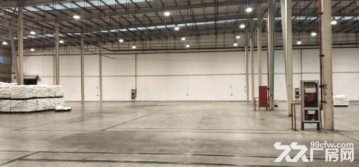 外高桥丙二类仓库8000平带雨棚带卸货平台高10米无税收-图(1)