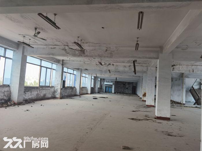 历城王舍人厂房土地大面积便宜出租-图(5)