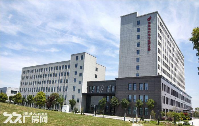 南京周边现代产业园底价盛大招商中,享多种优惠政策!-图(1)
