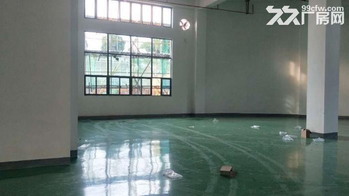 全新高标准框架结构仓库2800平方米丙二类消防-图(2)