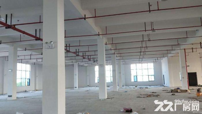 全新高标准框架结构仓库2800平方米丙二类消防-图(3)