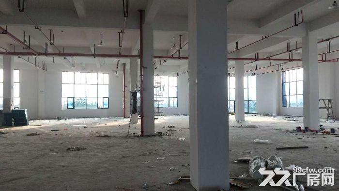 全新高标准框架结构仓库2800平方米丙二类消防-图(4)