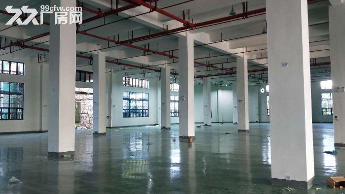 全新高标准框架结构仓库2800平方米丙二类消防-图(5)