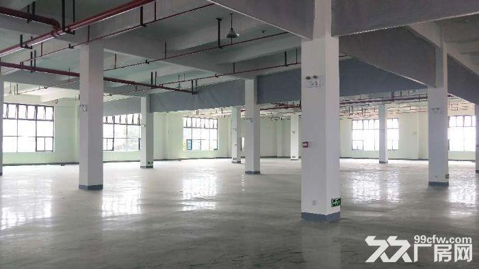 全新高标准框架结构仓库2800平方米丙二类消防-图(7)