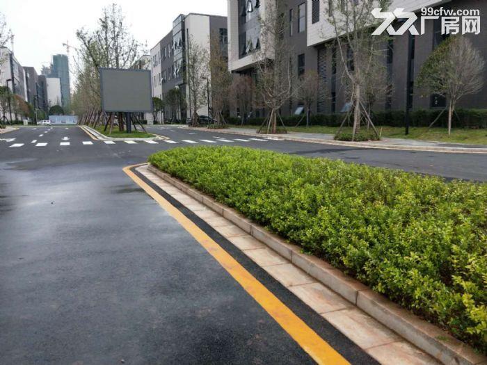 3层独栋工业质性厂房仓库展厅1500平方米形象好~-图(3)