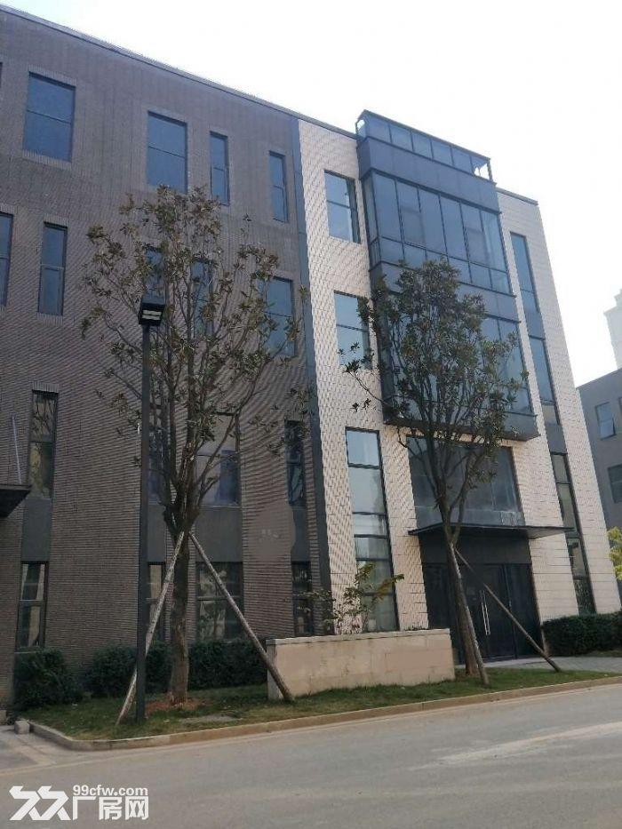 3层独栋工业质性厂房仓库展厅1500平方米形象好~-图(5)