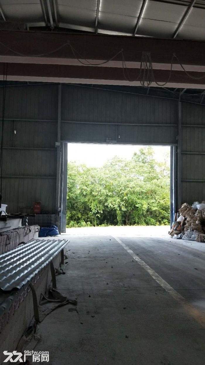 进大挂车钢构厂房1500平方米有产权-图(4)