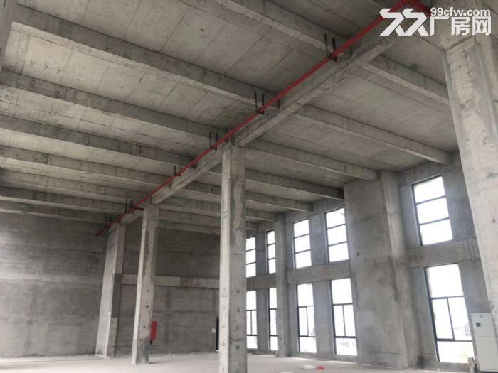 开发商直招江北新区500㎡办公厂房火热招商中-图(3)