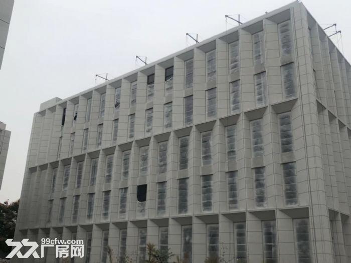 开发商直招江北新区500㎡办公厂房火热招商中-图(4)