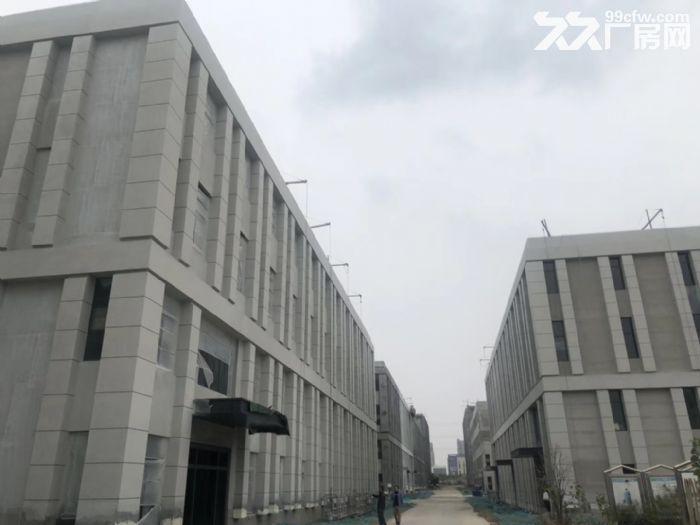 开发商直招江北新区500㎡办公厂房火热招商中-图(5)