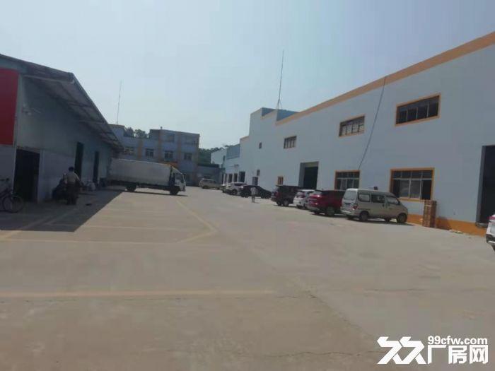 高明明城新建单一层厂房出租滴水10米可分租-图(2)