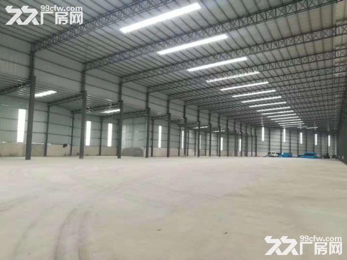 高明明城新建单一层厂房出租滴水10米可分租-图(1)