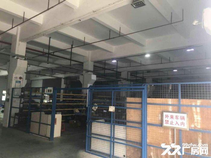 禅城石湾工业区独院标准厂房11700平,空地3500,带红本,易招工,交通便利-图(5)