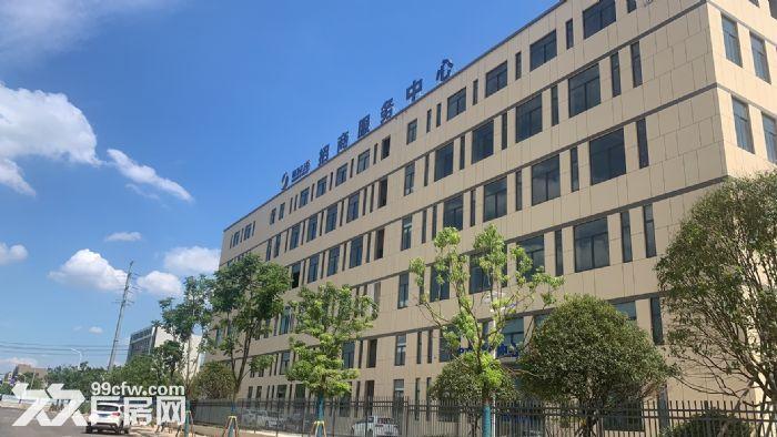 长沙高新区独栋现房出租出售-图(2)