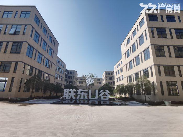 长沙高新区独栋现房出租出售-图(3)