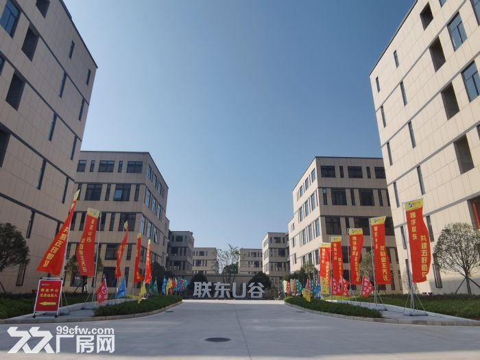长沙高新区独栋现房出租出售-图(4)