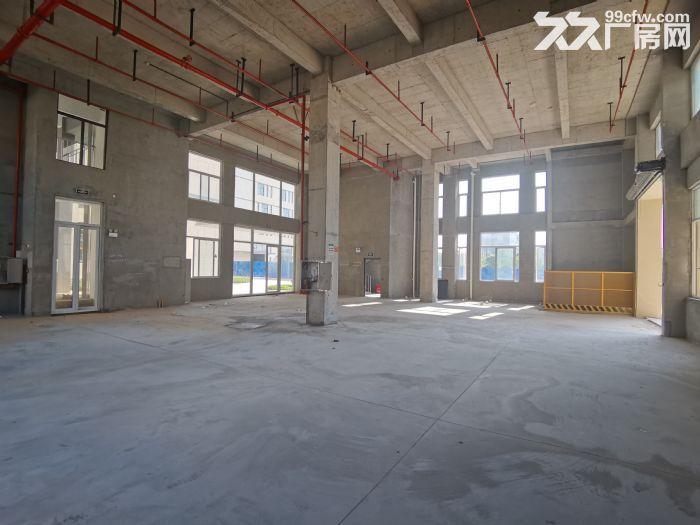 长沙高新区独栋现房出租出售-图(5)