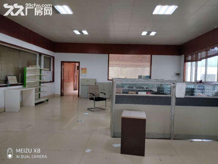 陈村花卉世界月季路2240平方场地出租-图(2)