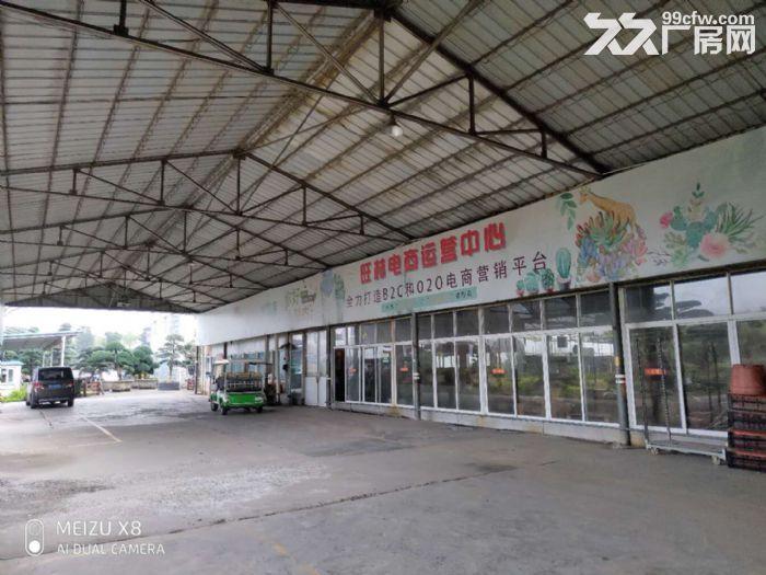 陈村花卉世界月季路2240平方场地出租-图(1)