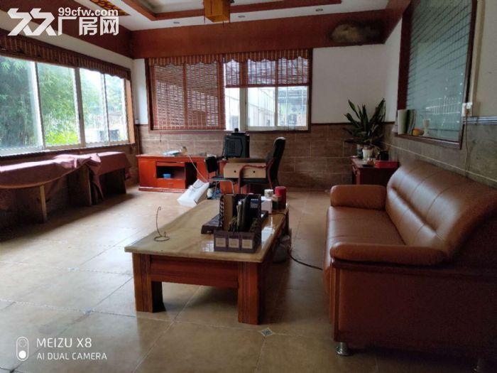 陈村花卉世界月季路2240平方场地出租-图(3)
