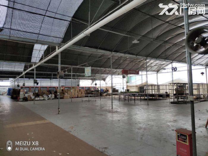 陈村花卉世界月季路2240平方场地出租-图(7)