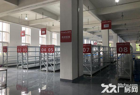 蚌埠仓储中心专业为电商淘宝提供仓配一体服务设备先进位置优越-图(5)
