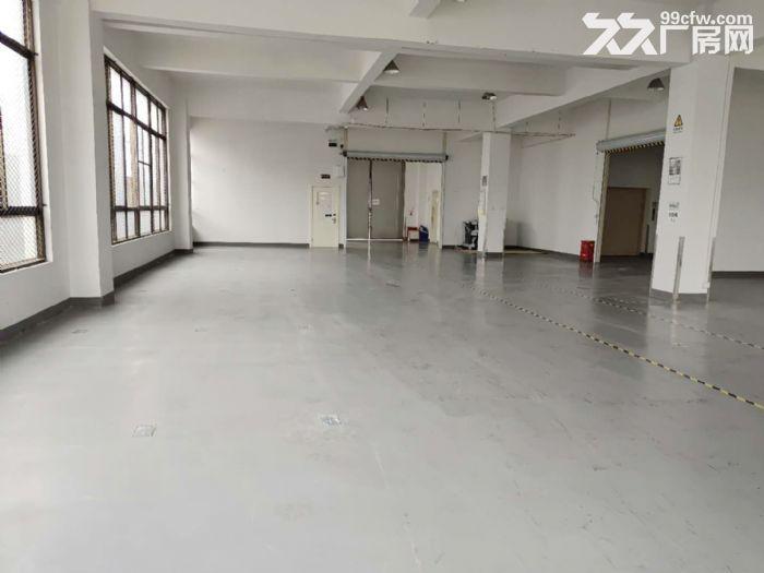 原房东直租丨青浦工业园区1750平独栋厂房空地大绿化适宜-图(5)