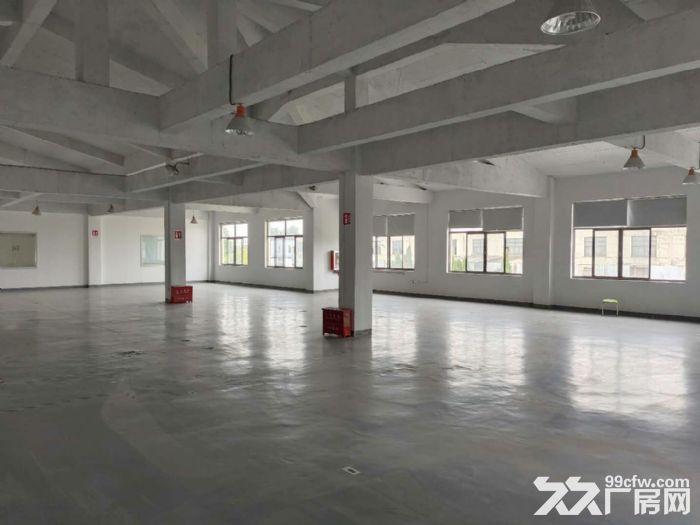 原房东直租丨青浦工业园区1750平独栋厂房空地大绿化适宜-图(7)
