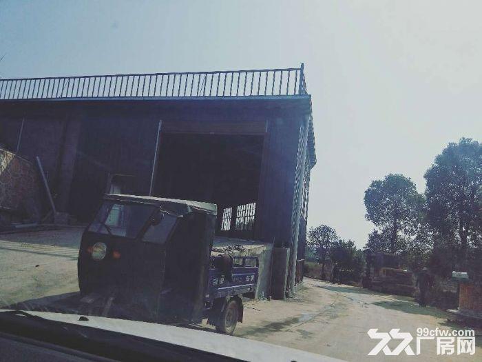 无居民钢构厂房4000平方米可分租-图(6)