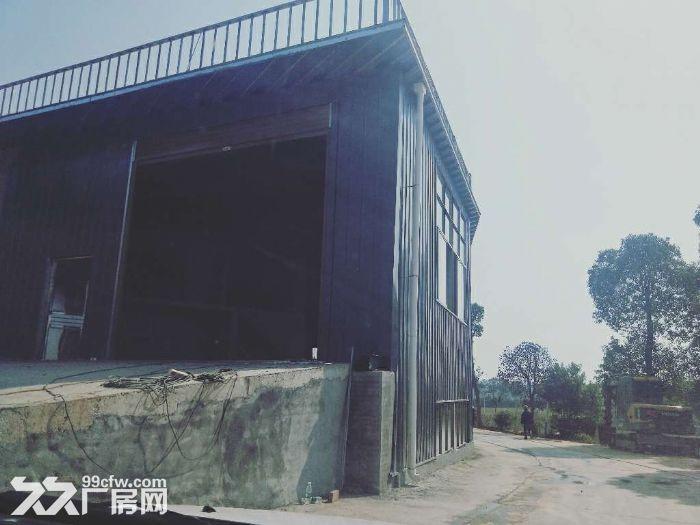 无居民钢构厂房4000平方米可分租-图(7)