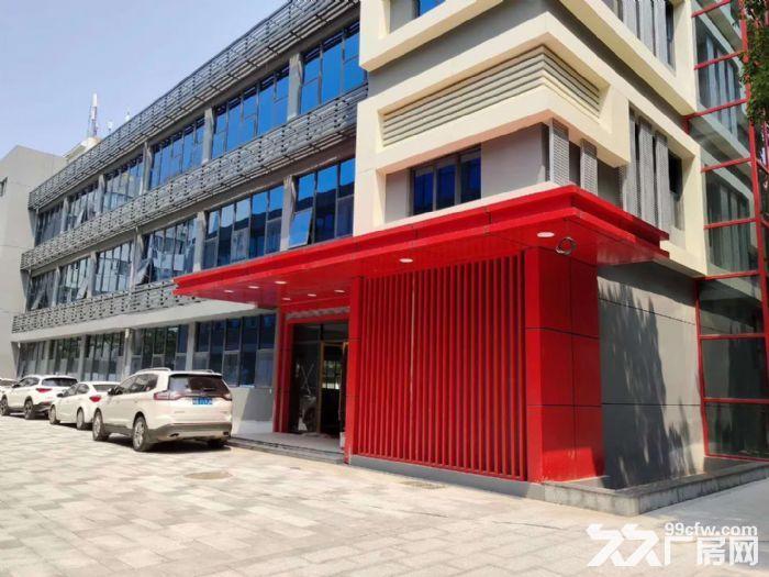 龙岗坂田地铁站附近独栋3115平精装办公厂房出租。-图(2)