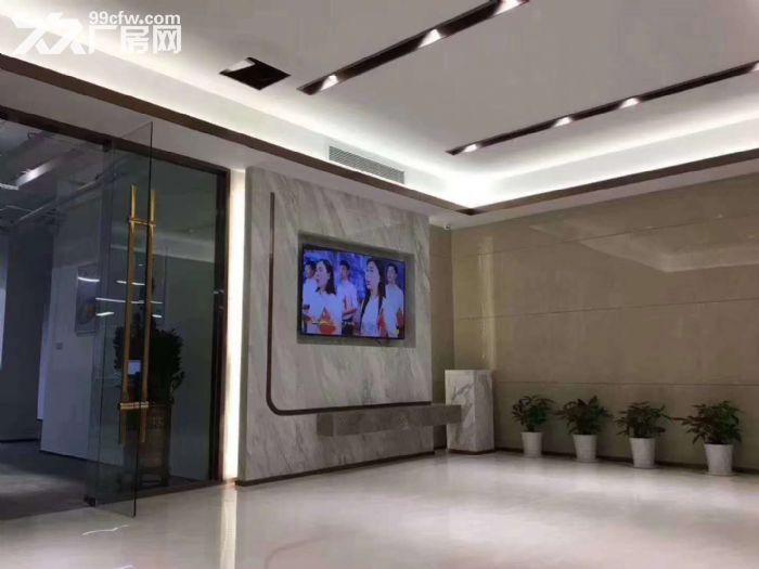 龙岗坂田地铁站附近独栋3115平精装办公厂房出租。-图(8)