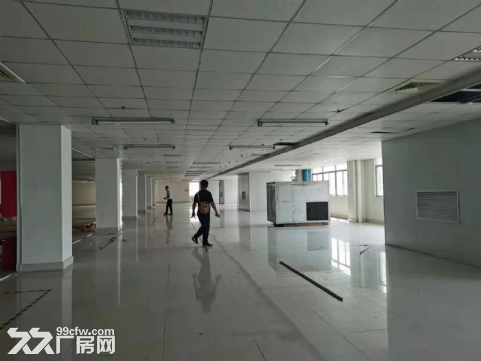 宝安松岗燕川原房东楼上实际面积1800平厂房出租。-图(2)