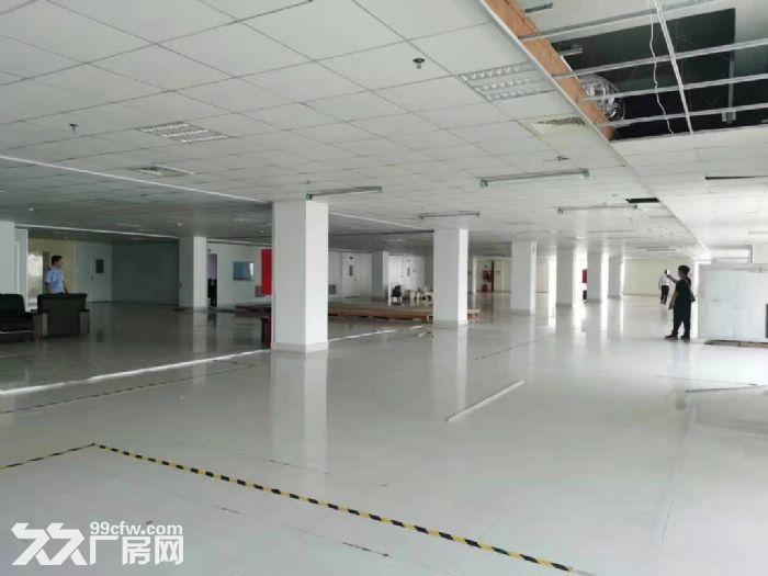 宝安松岗燕川原房东楼上实际面积1800平厂房出租。-图(5)