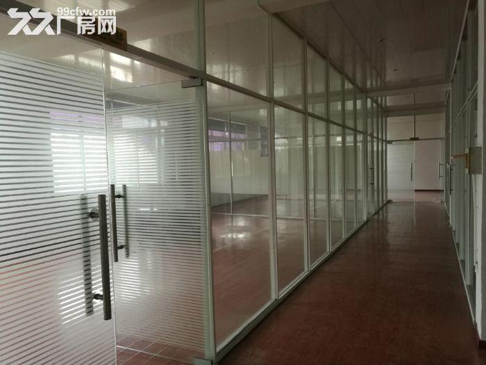 吕巷荣东路800号,104厂房出租,3750平-图(3)